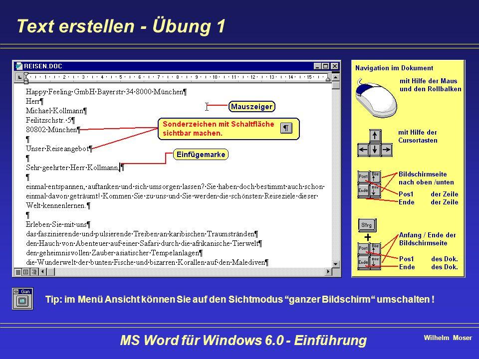 Wilhelm Moser MS Word für Windows 6.0 - Einführung Text erstellen - Übung 1 Tip: im Menü Ansicht können Sie auf den Sichtmodus ganzer Bildschirm umsch