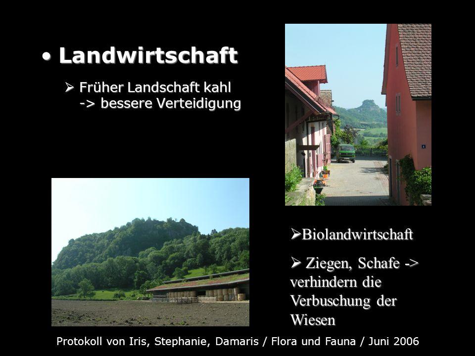 LandwirtschaftLandwirtschaft Früher Landschaft kahl -> bessere Verteidigung Früher Landschaft kahl -> bessere Verteidigung Biolandwirtschaft Biolandwi