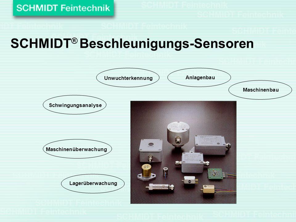 Unwuchterkennung Anlagenbau Maschinenbau Lagerüberwachung Maschinenüberwachung Schwingungsanalyse SCHMIDT ® Beschleunigungs-Sensoren