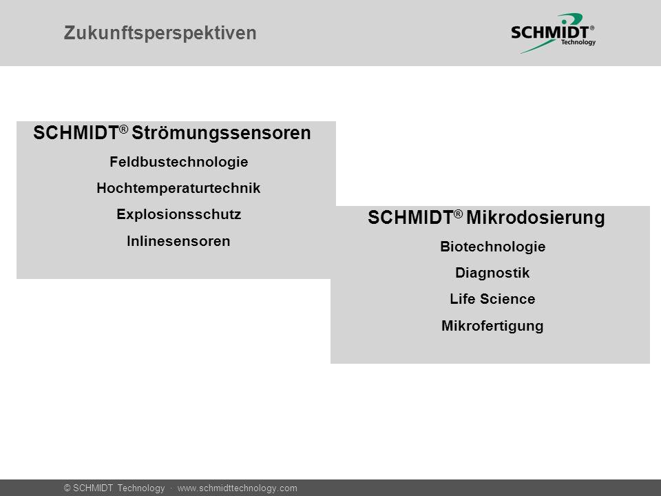 © SCHMIDT Technology · www.schmidttechnology.com Zukunftsperspektiven SCHMIDT ® Mikrodosierung » Biotechnologie » Diagnostik » Life Science » Mikrofer