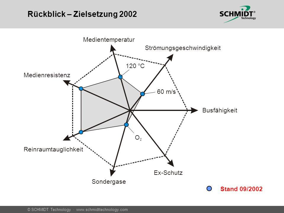 © SCHMIDT Technology · www.schmidttechnology.com Rückblick – Zielsetzung 2002 MedientemperaturMedienresistenz Reinraumtauglichkeit Sondergase Busfähig