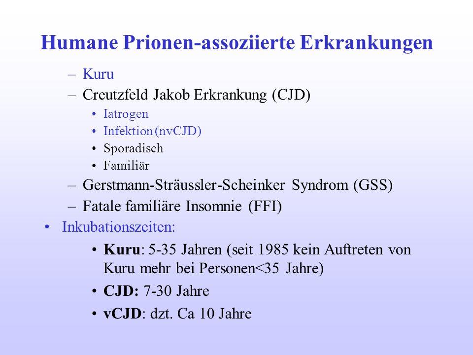 Humane Prionen-assoziierte Erkrankungen –Kuru –Creutzfeld Jakob Erkrankung (CJD) Iatrogen Infektion (nvCJD) Sporadisch Familiär –Gerstmann-Sträussler-