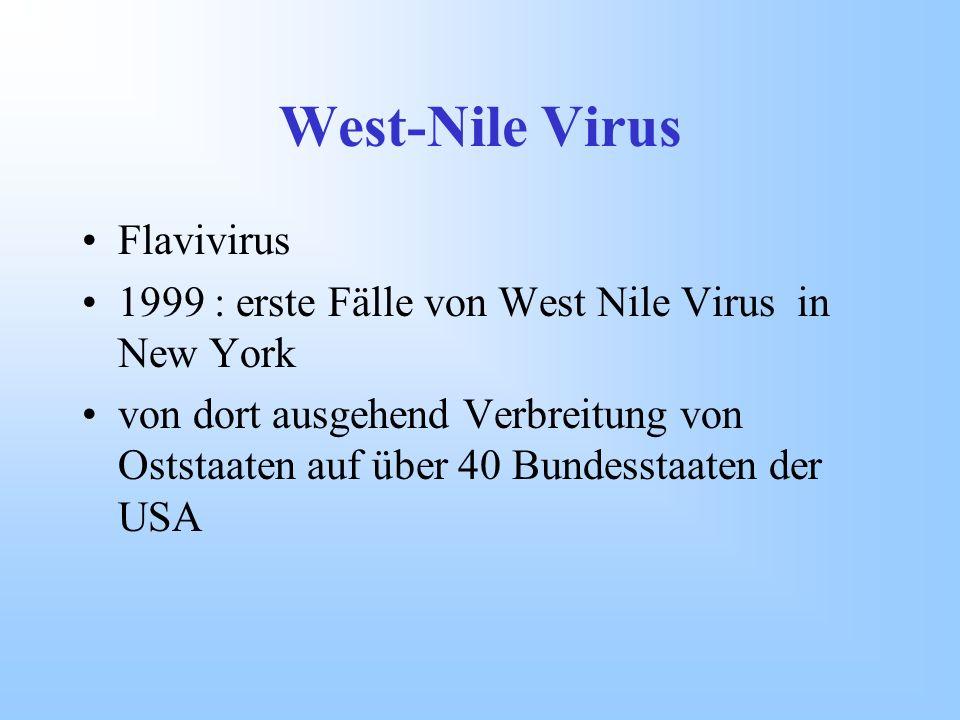 West-Nile Virus Flavivirus 1999 : erste Fälle von West Nile Virus in New York von dort ausgehend Verbreitung von Oststaaten auf über 40 Bundesstaaten
