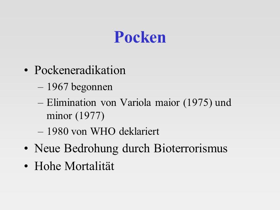 Pocken Pockeneradikation –1967 begonnen –Elimination von Variola maior (1975) und minor (1977) –1980 von WHO deklariert Neue Bedrohung durch Bioterror