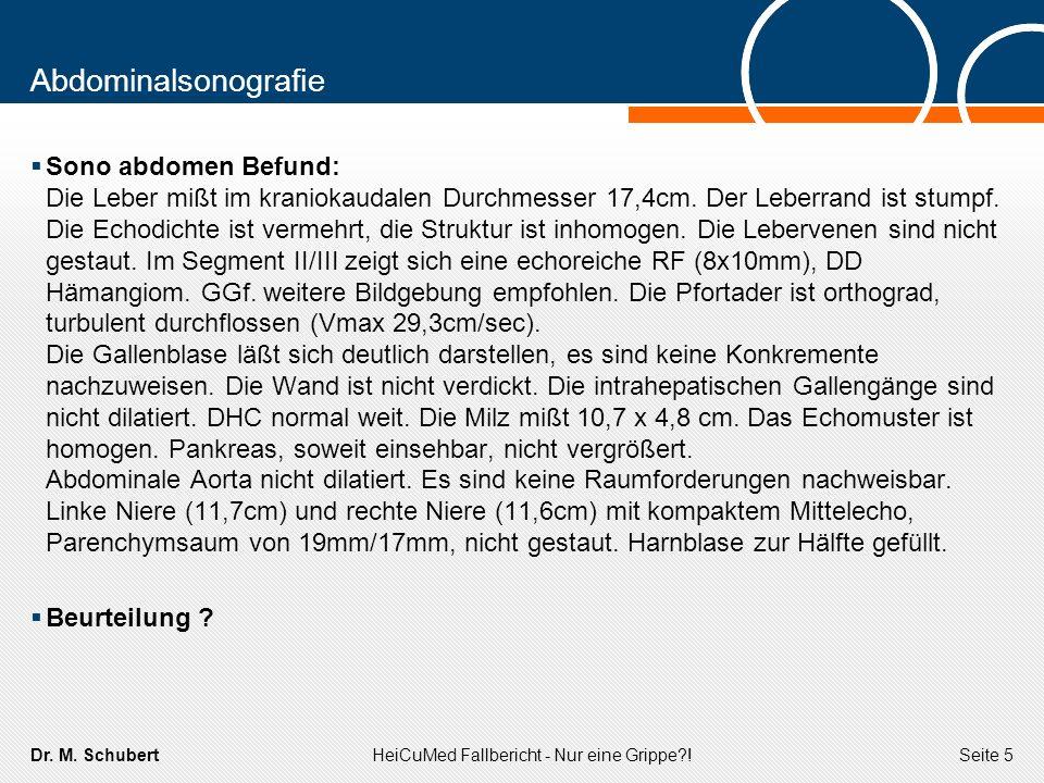 Dr. M. SchubertHeiCuMed Fallbericht - Nur eine Grippe?!Seite 5 Abdominalsonografie Sono abdomen Befund: Die Leber mißt im kraniokaudalen Durchmesser 1