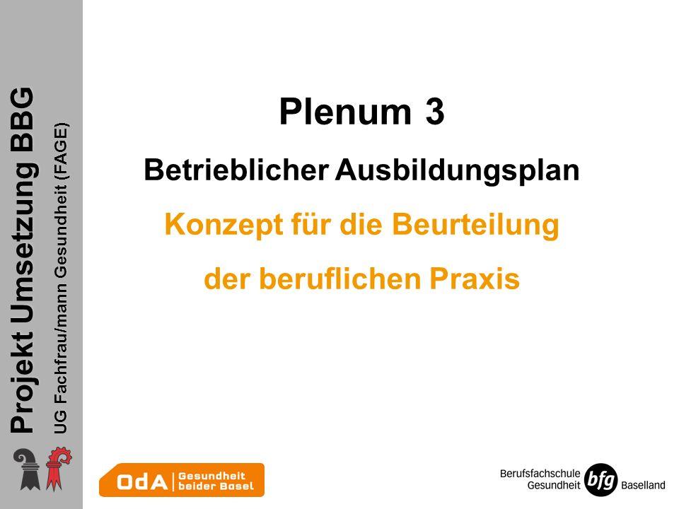 Projekt Umsetzung BBG UG Fachfrau/mann Gesundheit (FAGE) Plenum 3 Betrieblicher Ausbildungsplan Konzept für die Beurteilung der beruflichen Praxis