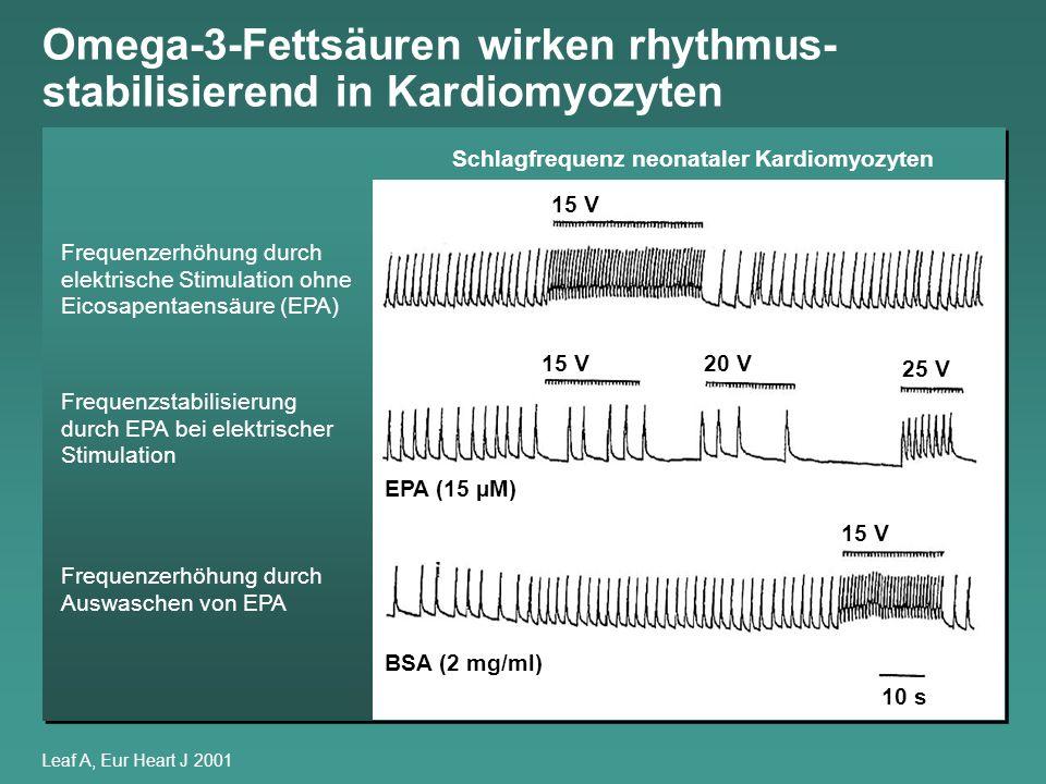 Omega-3-Fettsäuren wirken rhythmus- stabilisierend in Kardiomyozyten Leaf A, Eur Heart J 2001 Frequenzerhöhung durch elektrische Stimulation ohne Eico