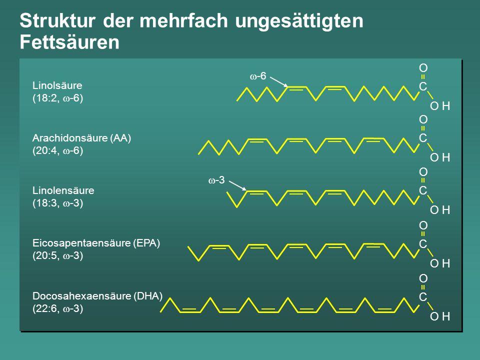 Arrhythmie-Prävention durch Omega-3-Fettsäuren Leaf A, Eur Heart J 2001; Albert C M et al., NEJM 2001, GISSI-P Investigators, Lancet 1999 Der antiarrhythmische Effekt der Omega-3-Fettsäuren wurde sowohl experimentell als auch klinisch bestätigt: Hemmung und Terminierung der Fibrillation in Kardiomyozyten Reduktion ischämiebedingten Herzflimmerns Reduktion der koronaren Mortalität durch hohe Plasmaspiegel von EPA/DHA in epidemiologischen Studien Reduktion des Plötzlichen Herztodes in GISSI-P um 45 %