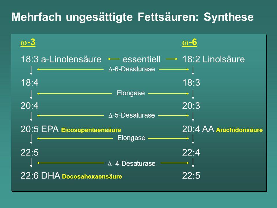 18:3 a-Linolensäure essentiell18:2 Linolsäure 18:418:3 20:420:3 20:5 EPA20:4 AA 22:522:4 22:6 DHA22:5 Mehrfach ungesättigte Fettsäuren: Synthese -3 -6