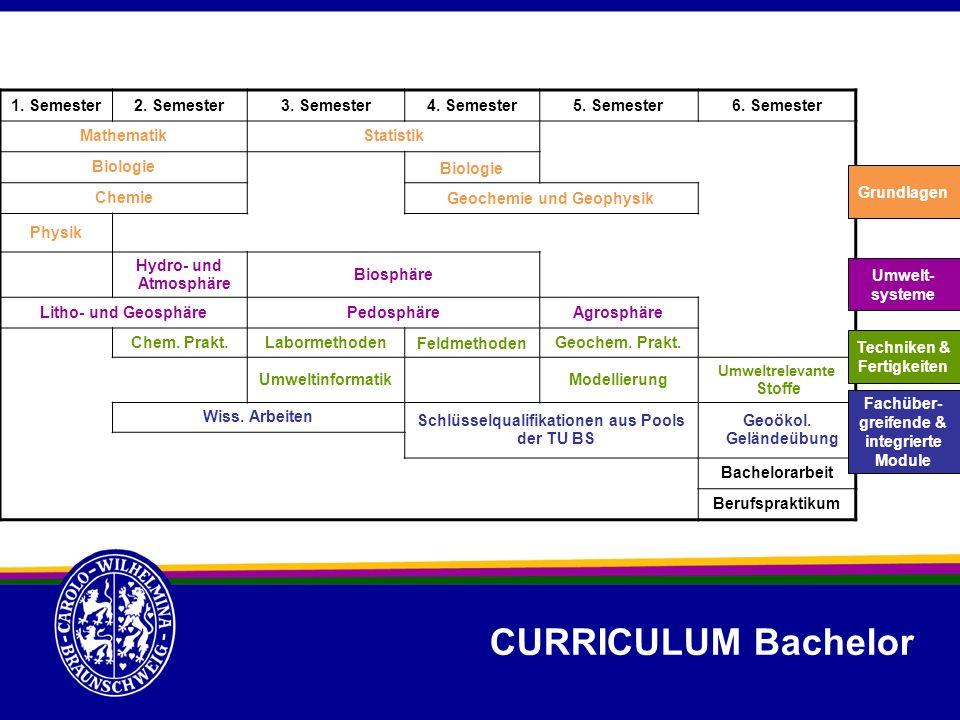 CURRICULUM Bachelor 1. Semester2. Semester3. Semester4. Semester5. Semester6. Semester MathematikStatistik Biologie Chemie Geochemie und Geophysik Phy