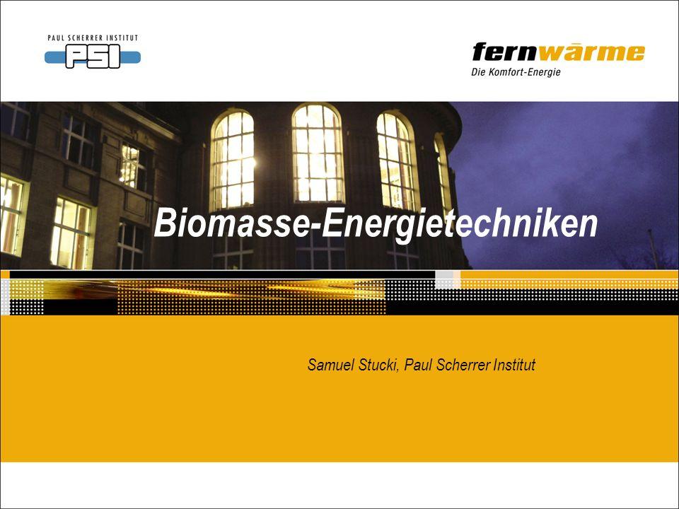 SS51 12. Januar 2006 Verstromung von Holz: Technologie und Anlagengrösse bestimmen den Wirkungsgrad
