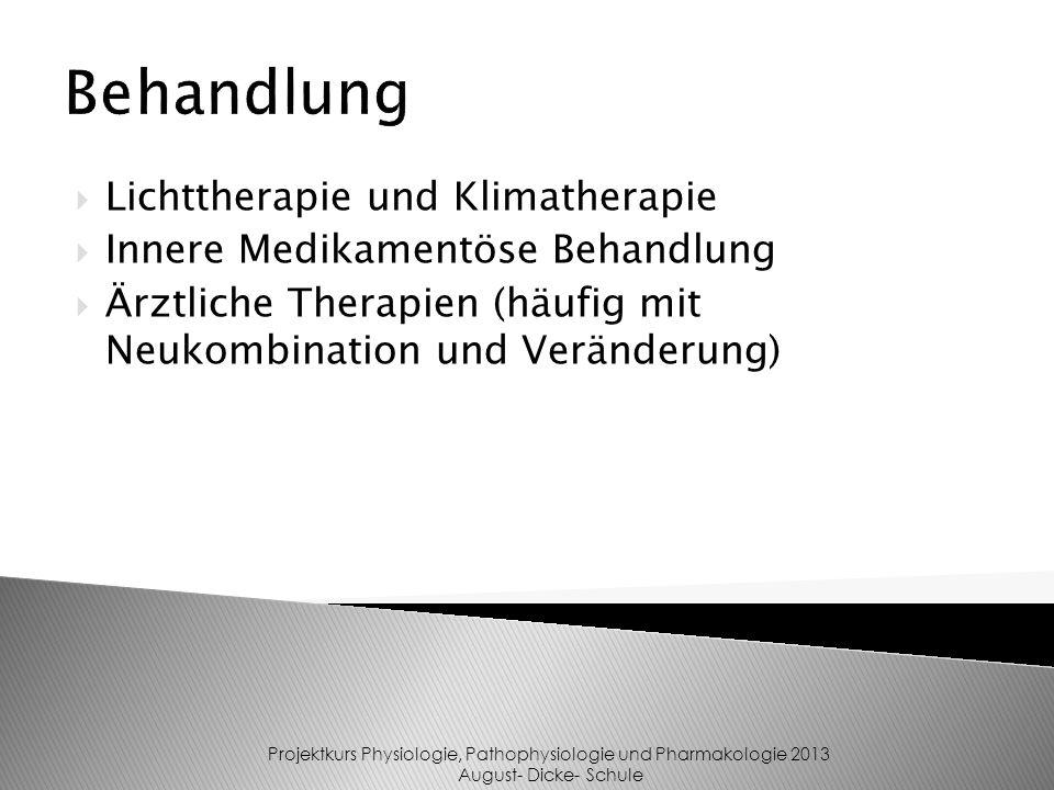 Lichttherapie und Klimatherapie Innere Medikamentöse Behandlung Ärztliche Therapien (häufig mit Neukombination und Veränderung) Behandlung Projektkurs