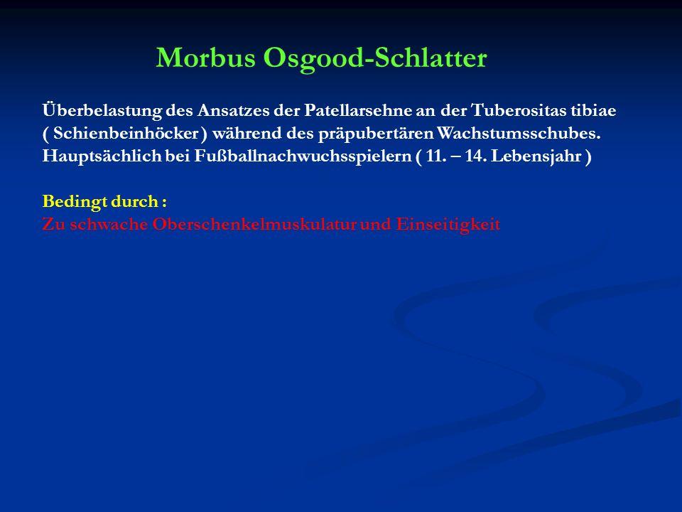 Morbus Osgood-Schlatter Überbelastung des Ansatzes der Patellarsehne an der Tuberositas tibiae ( Schienbeinhöcker ) während des präpubertären Wachstum