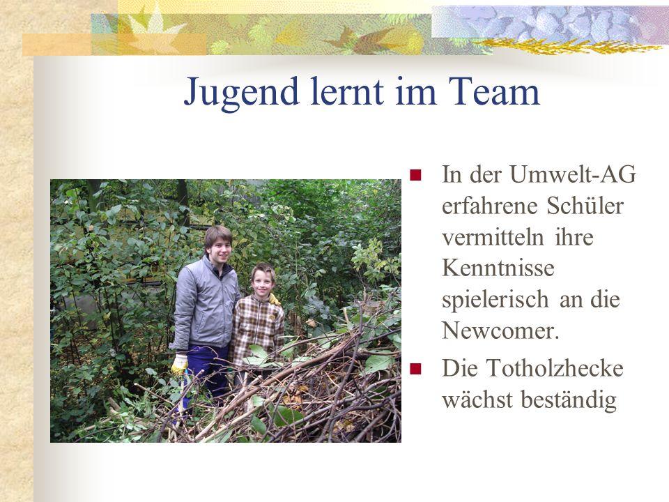 Pflege der Zugangswege Geduldig und mit Freude werden auch von den jüngsten Mitgliedern immer wiederkehrende Pflegearbeiten im Ökogarten ausgeführt.