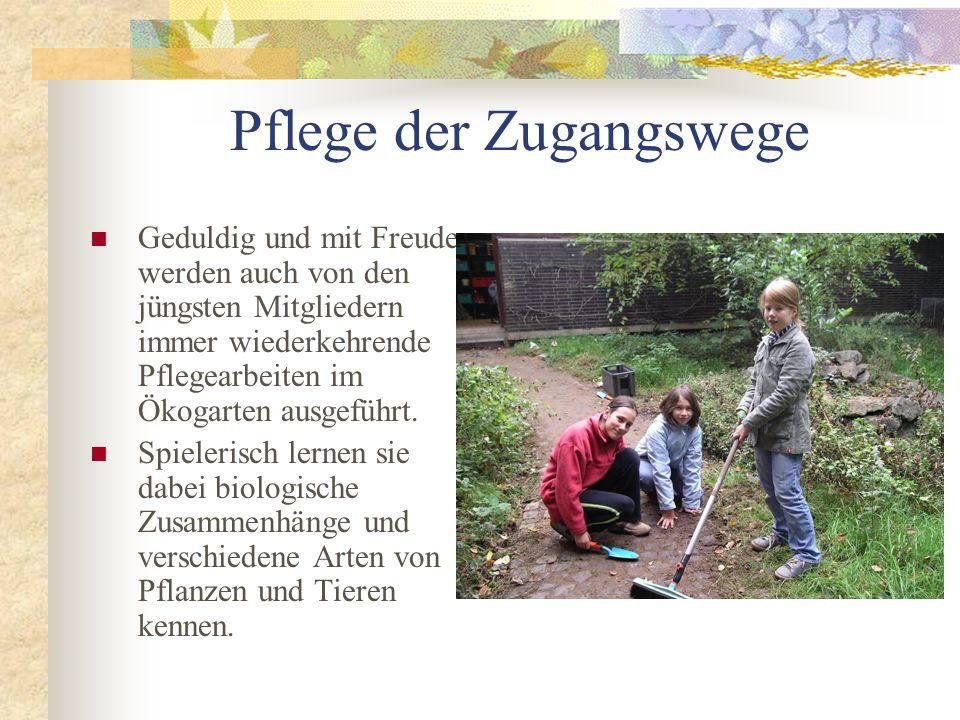 Pflege der Zugangswege Geduldig und mit Freude werden auch von den jüngsten Mitgliedern immer wiederkehrende Pflegearbeiten im Ökogarten ausgeführt. S