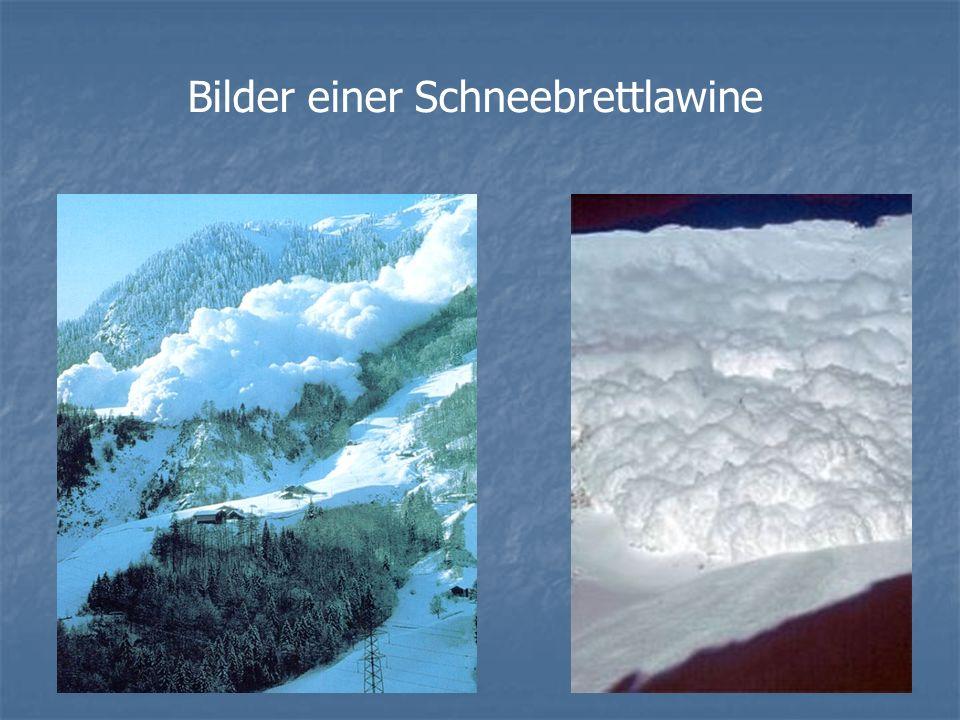Bilder einer Schneebrettlawine
