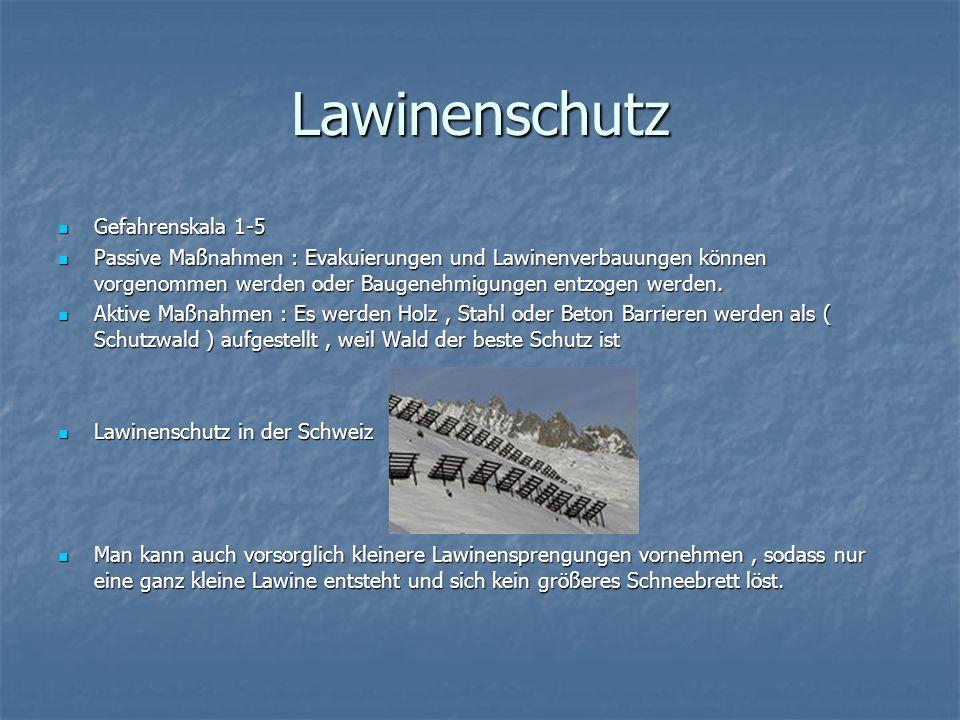 Lawinenrettung Entstehung von Nachlawinen möglich Entstehung von Nachlawinen möglich Zuerst wir an der Oberfläche mit Lawinenhunden und Rettern nach Kleidungsstücken o.
