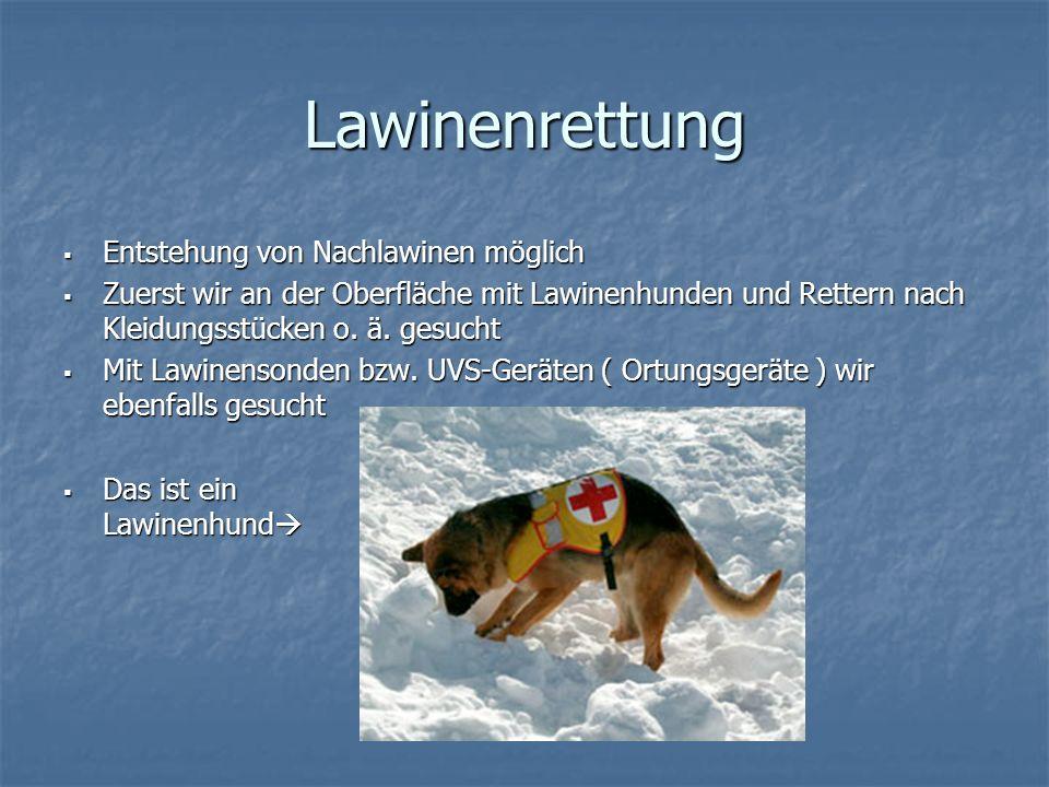 Lawinenrettung Entstehung von Nachlawinen möglich Entstehung von Nachlawinen möglich Zuerst wir an der Oberfläche mit Lawinenhunden und Rettern nach K