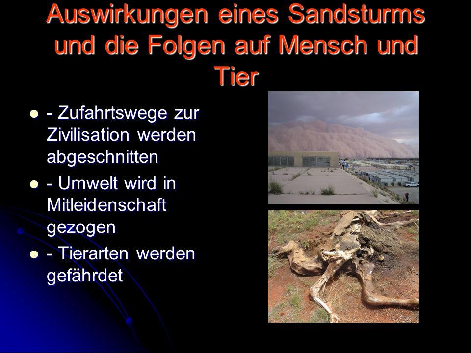 Auswirkungen eines Sandsturms und die Folgen auf Mensch und Tier - Zufahrtswege zur Zivilisation werden abgeschnitten - Zufahrtswege zur Zivilisation