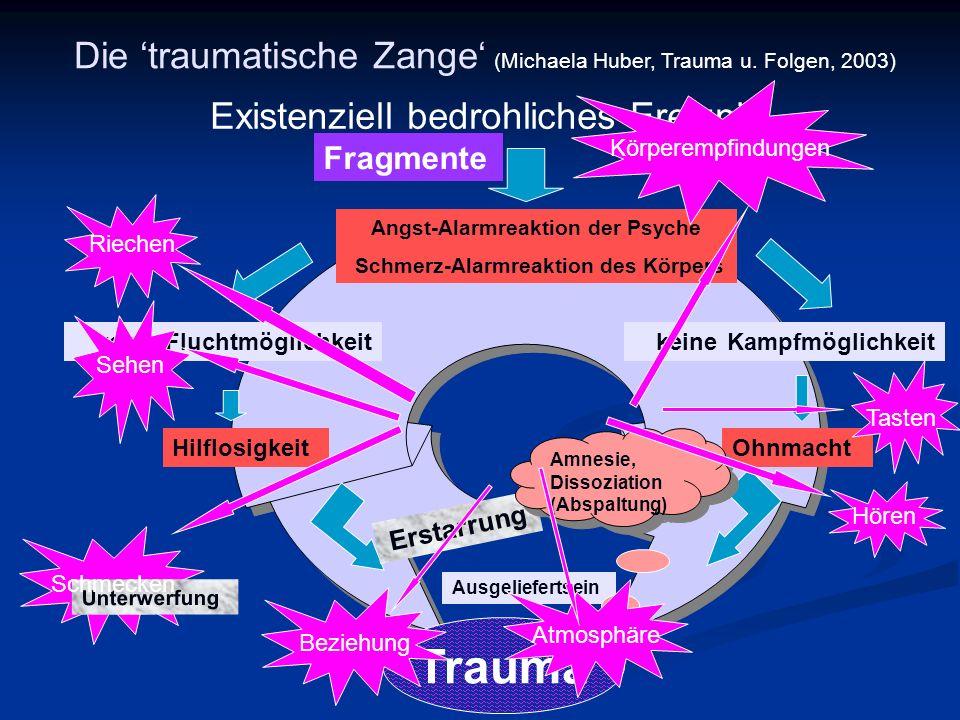 Die traumatische Zange (Michaela Huber, Trauma u.