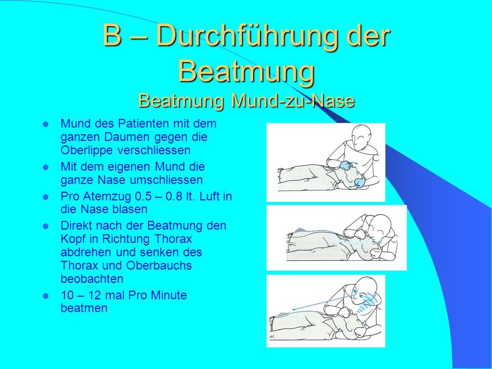 B – Atmung prüfen Methoden zur Überprüfung der Atmung Sehen (Heben und Senken des Brust- korbes Hören (Atemge- räusche im Ohr) Fühlen (Atemzug an der