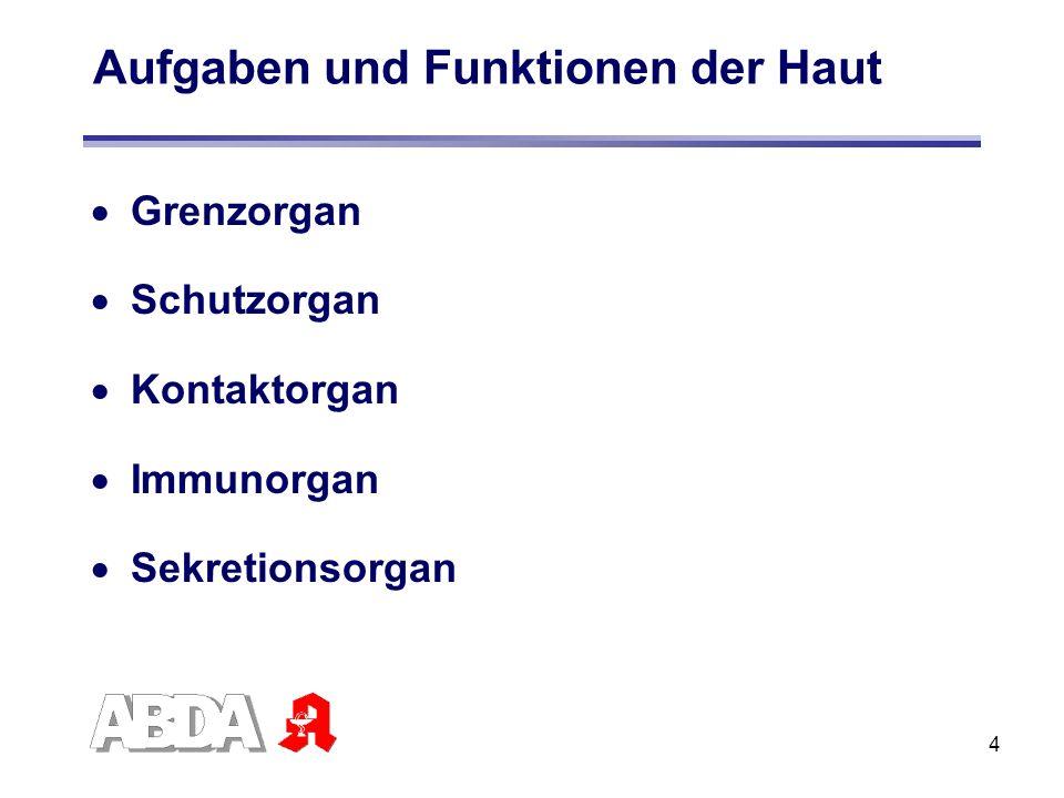 4 Aufgaben und Funktionen der Haut Grenzorgan Schutzorgan Kontaktorgan Immunorgan Sekretionsorgan