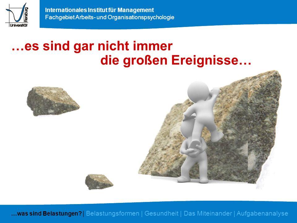 Internationales Institut für Management Fachgebiet Arbeits- und Organisationspsychologie tägliche Ärgernisse Sand im Getriebe Stolpersteine …was sind Belastungen.