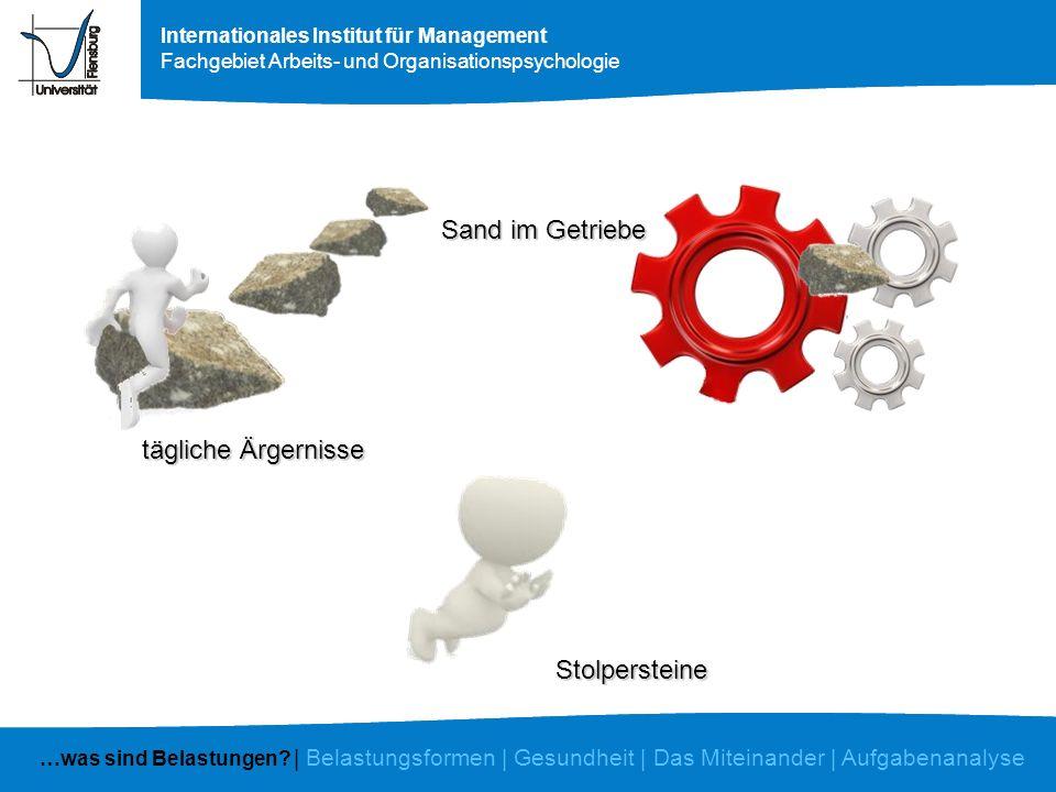 Internationales Institut für Management Fachgebiet Arbeits- und Organisationspsychologie tägliche Ärgernisse Sand im Getriebe Stolpersteine …was sind