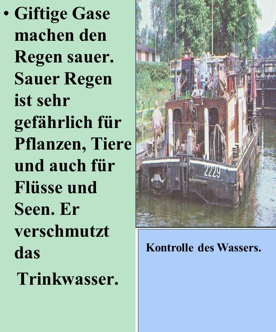 Giftige Gase machen den Regen sauer. Sauer Regen ist sehr gefährlich für Pflanzen, Tiere und auch für Flüsse und Seen. Er verschmutzt das Trinkwasser.