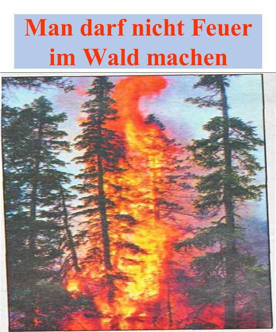 Man darf nicht Feuer im Wald machen