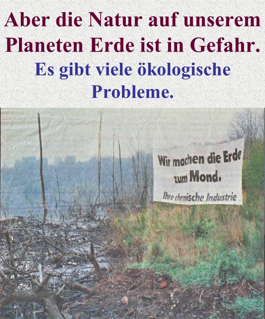 Aber die Natur auf unserem Planeten Erde ist in Gefahr. Es gibt viele ökologische Probleme.
