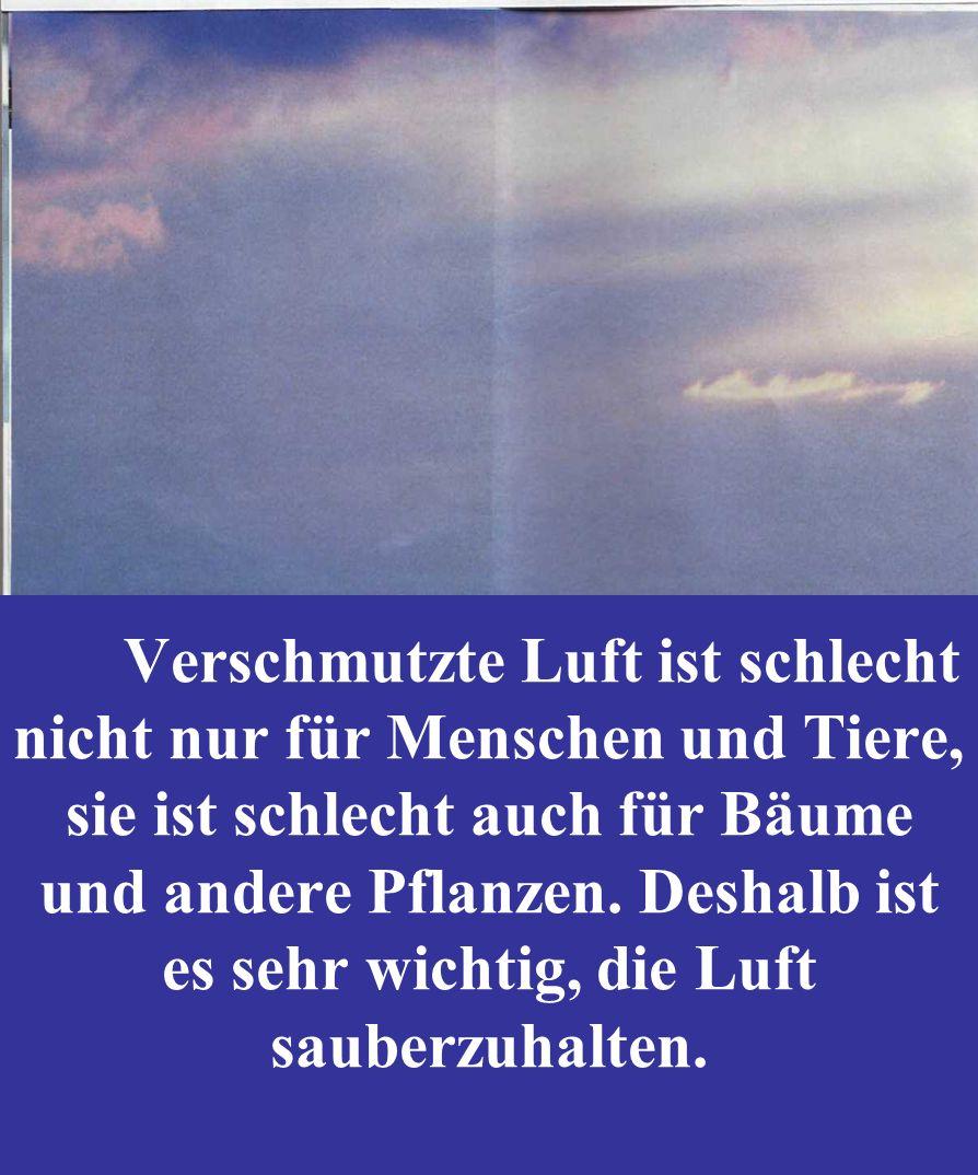 6 Deutschland 2/2007 Verschmutzte Luft ist schlecht nicht nur für Menschen und Tiere, sie ist schlecht auch für Bäume und andere Pflanzen. Deshalb ist