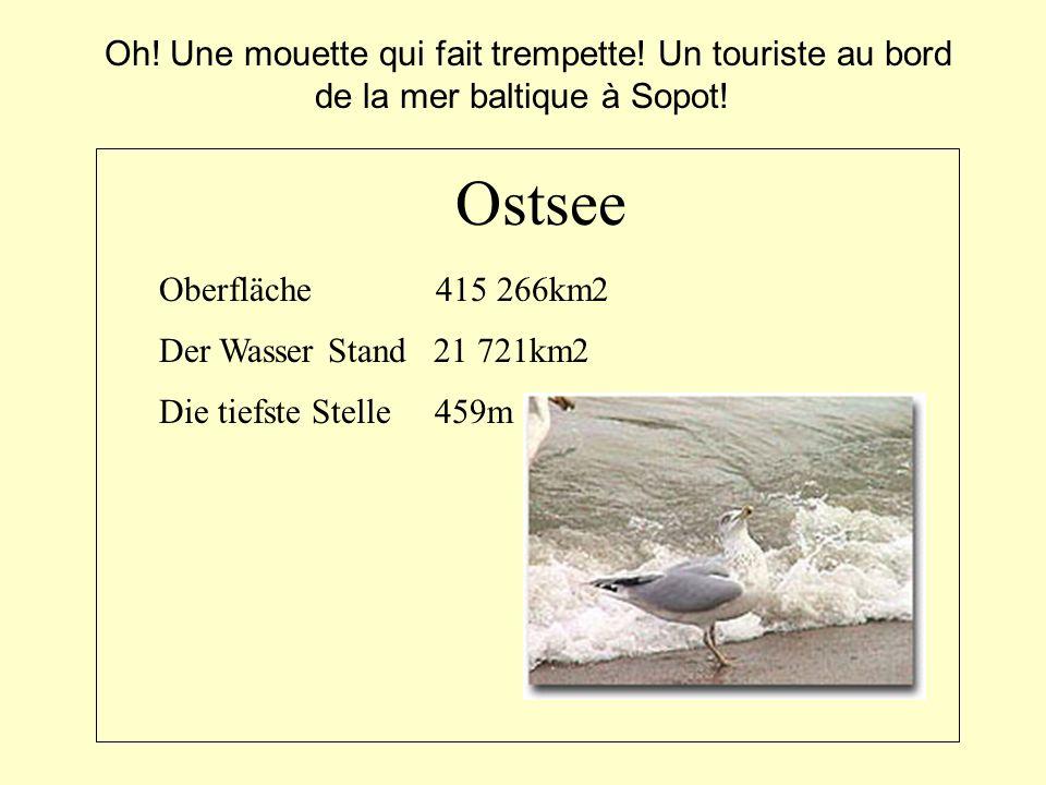 Oberfläche 415 266km2 Der Wasser Stand 21 721km2 Die tiefste Stelle 459m Ostsee Oh! Une mouette qui fait trempette! Un touriste au bord de la mer balt