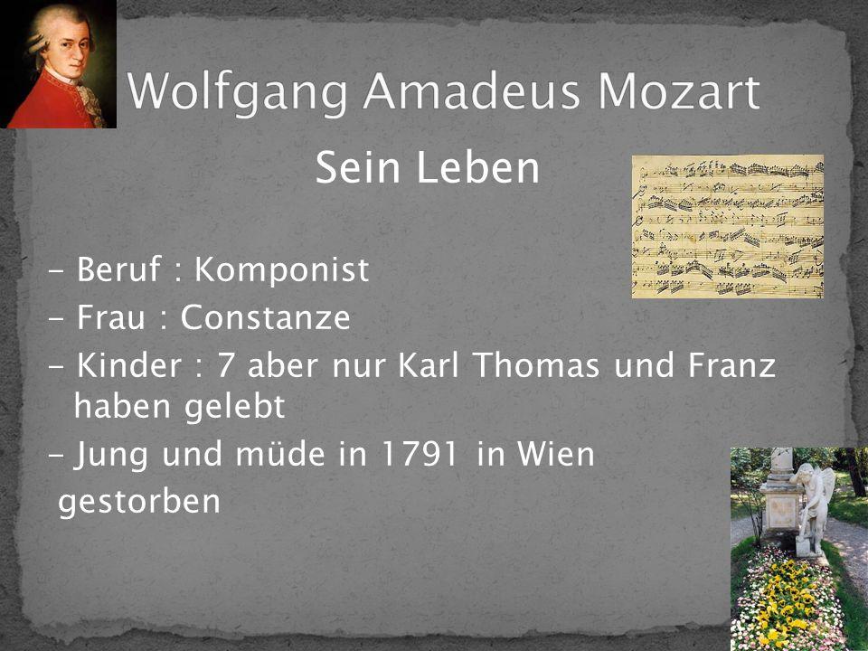 Sein Werk - Sinfonische Musik - Konzerte _ Kammermusik _ Klaviermusik - Wichtige Oper : Die Zauberflöte - Sehr bekanntes Requiem (nicht fertig)