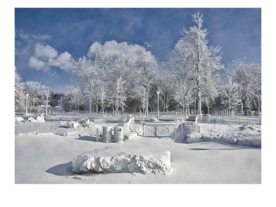 Die Weltmedia verkundigt haben, daß Niagara Wasserfälle infolge diesjährigen arktischen Winter in USA und Kanada /Wasserfälle an der Grenze lokalisiert sind/ gefroren sind.