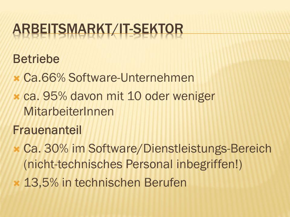 Betriebe Ca.66% Software-Unternehmen ca. 95% davon mit 10 oder weniger MitarbeiterInnen Frauenanteil Ca. 30% im Software/Dienstleistungs-Bereich (nich