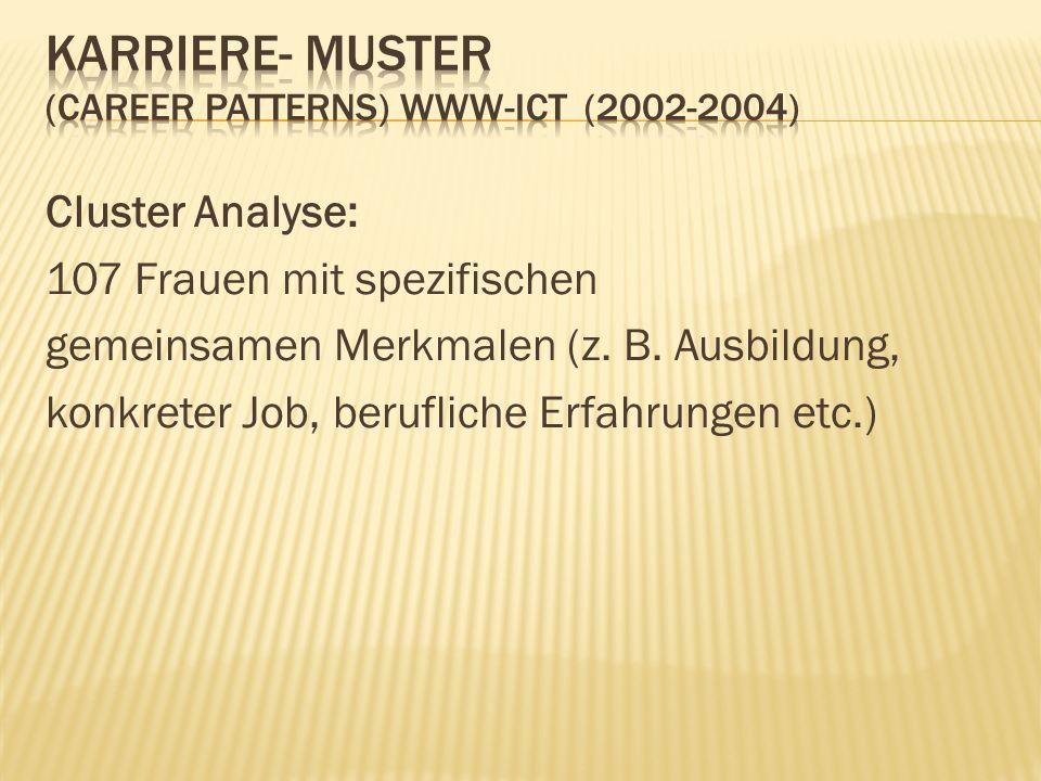 Cluster Analyse: 107 Frauen mit spezifischen gemeinsamen Merkmalen (z. B. Ausbildung, konkreter Job, berufliche Erfahrungen etc.)