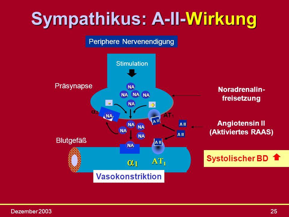 Dezember 200325 Periphere Nervenendigung Stimulation NA NA NA NA AT 1 NA NA NA NA Präsynapse Blutgefäß Angiotensin II (Aktiviertes RAAS)- + NA NA NA A