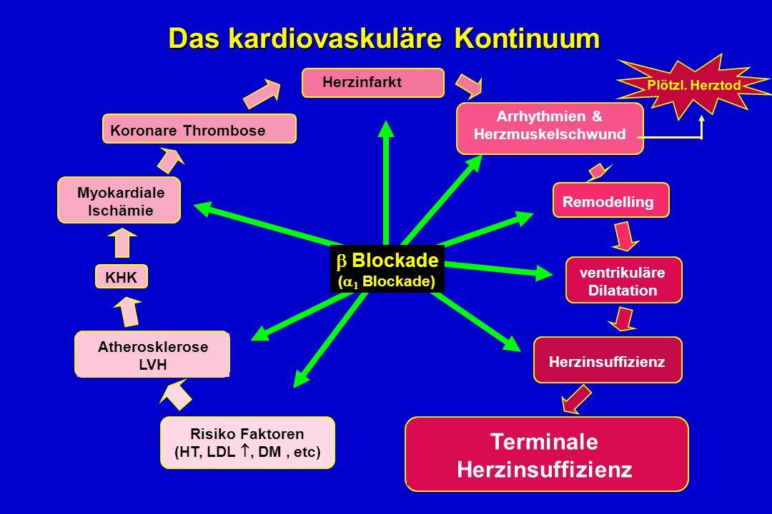 Risiko Faktoren ) (HT, LDL, DM, etc) Atherosklerose LVH KHK Myokardiale Ischämie Koronare Thrombose Herzinfarkt Arrhythmien & Herzmuskelschwund Remodelling ventrikuläre Dilatation Terminale Herzinsuffizienz Plötzl.