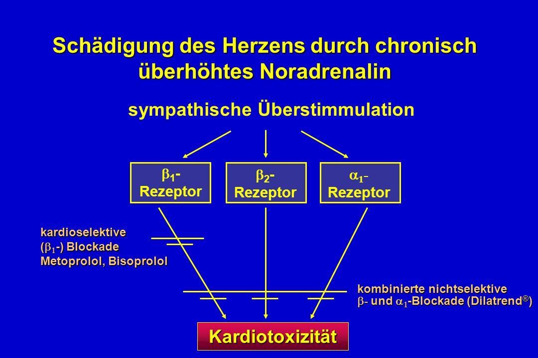 2 - Rezeptor 1 - Rezeptor 1 - Rezeptor sympathische Überstimmulation kardioselektive ( -) Blockade Metoprolol, Bisoprolol kombinierte nichtselektive - und -Blockade (Dilatrend ® ) Schädigung des Herzens durch chronisch überhöhtes Noradrenalin Kardiotoxizität