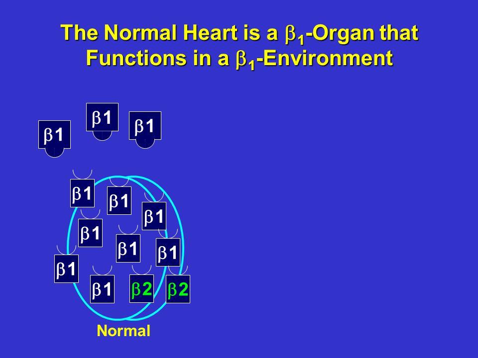 1 1 1 1 1 1 1 1 2 2 1 1 1 Heart Failure Converts the Circulation From a 1 to a 1 / 2 / 1 -Environment Heart failure 1 2 2 2 2 1 1 1 1 1 1 1 2 2 1 1