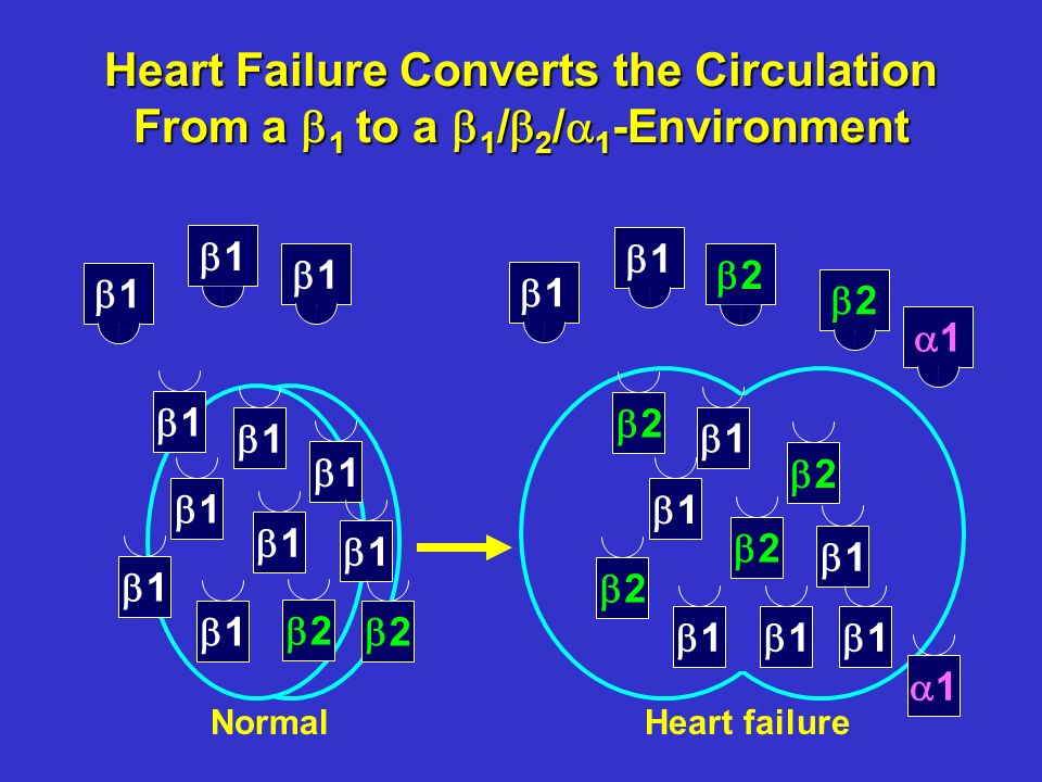 Time (years) 1,3591,2341,105933352 1,3661,2581,1551,002383 Number at risk MetoprololCarvedilol 1,518 1,511 Mortality (%) 0 10 20 3040012345 Survival benefit 20%, P = 0.0004 Metoprolol Carvedilol COMET: Cardiovascular Mortality ESC 2003