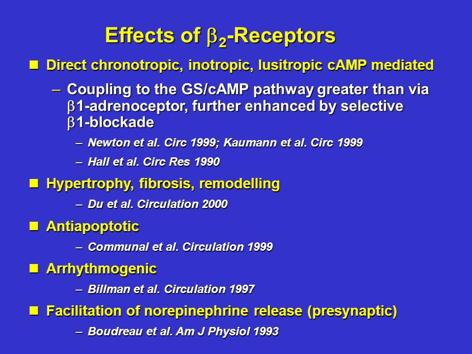 Effects of 2 -Receptors nDirect chronotropic, inotropic, lusitropic cAMP mediated –Coupling to the GS/cAMP pathway greater than via 1-adrenoceptor, further enhanced by selective 1-blockade –Newton et al.