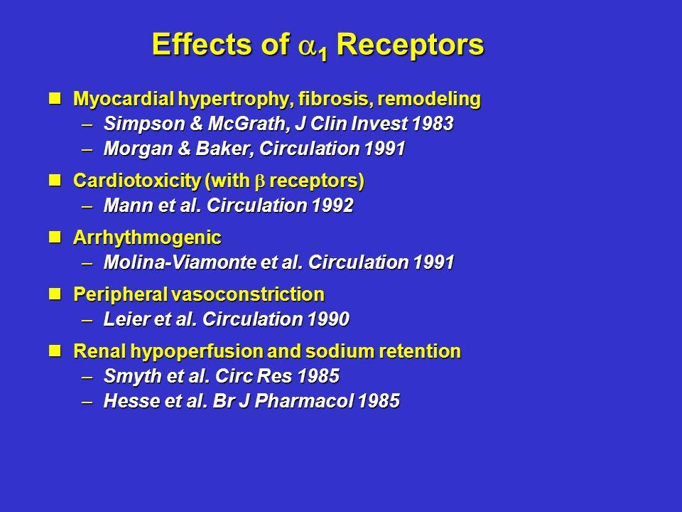 COMET-Studie: Unterschiede in der Mortalität Carvedilol versus Metoprolol -20% -17% P=0,0017 P=0,0004 Poole-Wilson P.