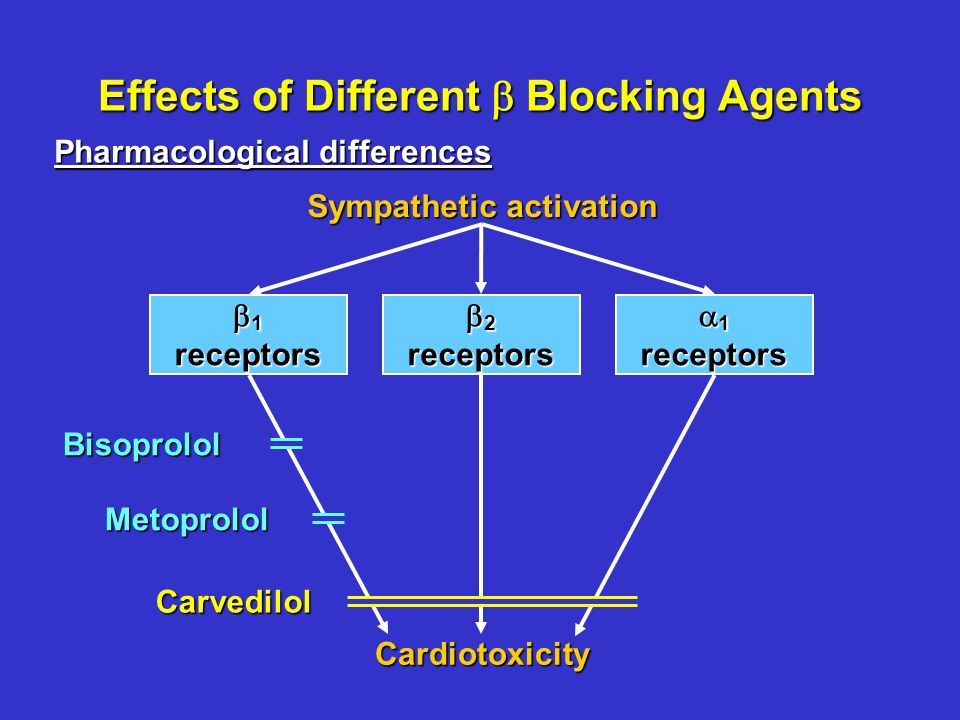 Effects of Different Blocking Agents Sympathetic activation Pharmacological differences 1receptors 2receptors 1receptors CardiotoxicityBisoprololCarvedilolMetoprolol