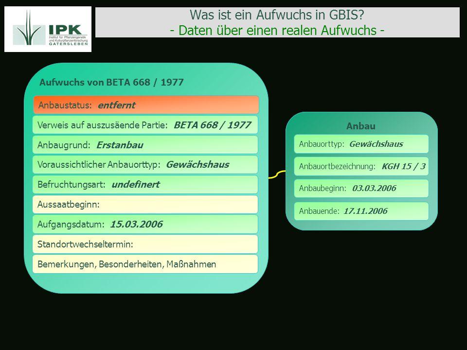 Was ist ein Aufwuchs in GBIS? - Daten über einen realen Aufwuchs - Aufwuchs von BETA 668 / 1977 Verweis auf auszusäende Partie: BETA 668 / 1977 Anbaus