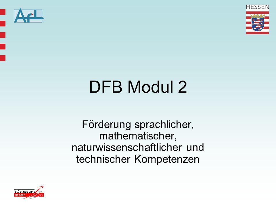 DFB Modul 2 Förderung sprachlicher, mathematischer, naturwissenschaftlicher und technischer Kompetenzen