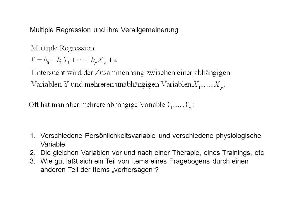 Ansatz (I): Man könnte einfach alle Korrelationen zwischen (i) den X-Werten, (ii) den Y-Werten, und (iii) allen X-Y-Paaren betrachten.