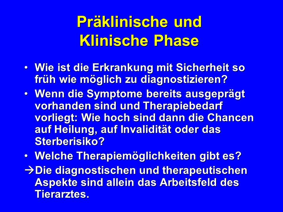 Phasen einer Erkrankung Präklinische PhasePräklinische Phase Klinische PhaseKlinische Phase –subklinischer Verlauf –(sub-)akuter Verlauf –(sub-)chroni