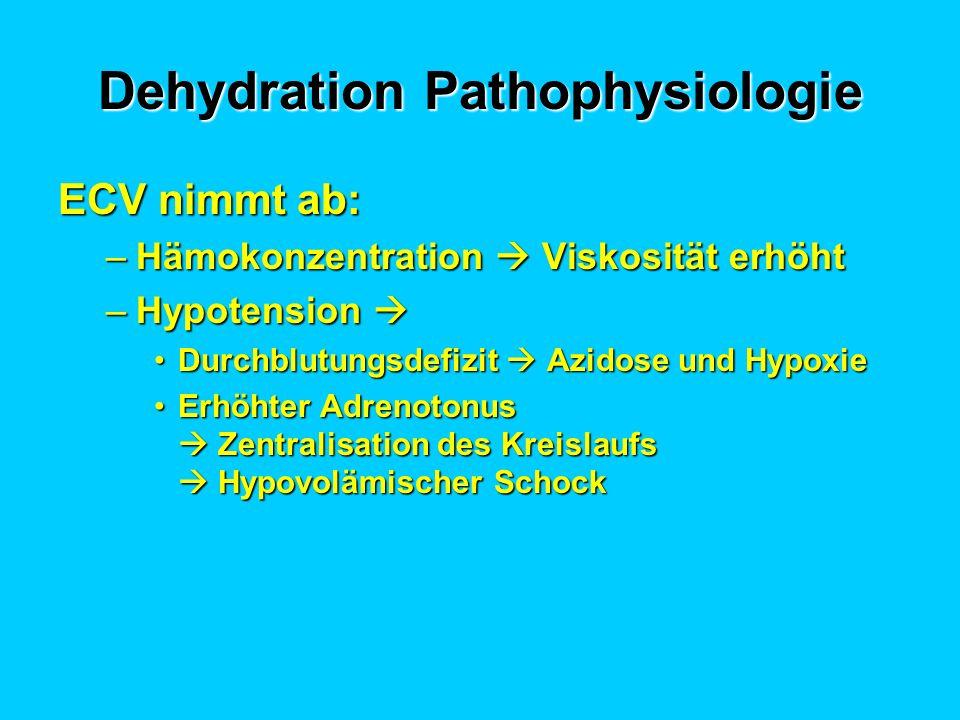 Dehydration Pathophysiologie ECV nimmt ab: –Hämokonzentration Viskosität erhöht –Hypotension –Hypotension Durchblutungsdefizit Azidose und HypoxieDurchblutungsdefizit Azidose und Hypoxie Erhöhter Adrenotonus Zentralisation des Kreislaufs Hypovolämischer SchockErhöhter Adrenotonus Zentralisation des Kreislaufs Hypovolämischer Schock